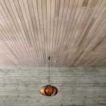 7. Ceiling panneling